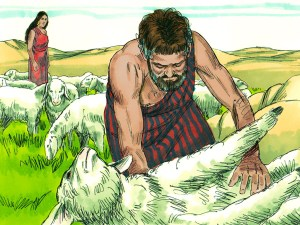 Conscientious Shepherd