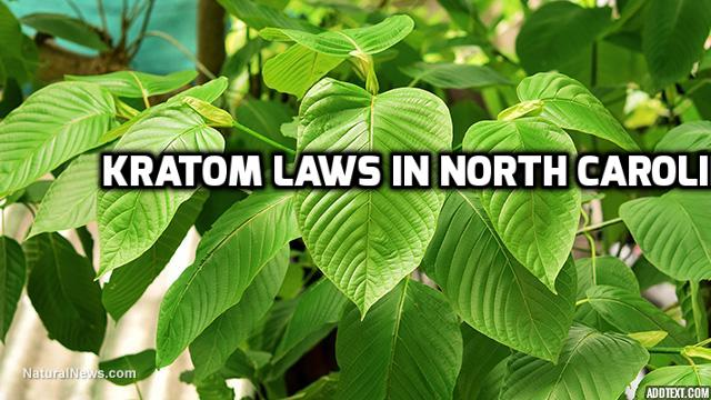 Kratom Laws In North Carolina