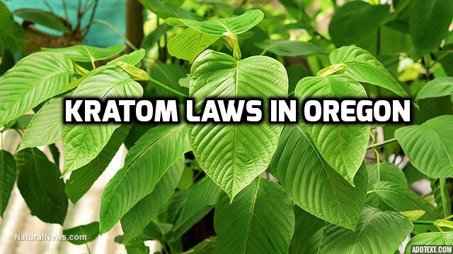 Kratom Laws In Oregon