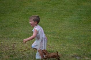 banksia-park-puppies-slip-and-slide-13