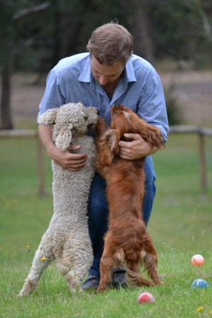 Banksia Park Puppies Vin