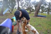 banksia-park-puppies-missy-27-of-40