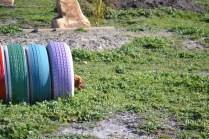 Banksia Park Puppies Willbee - 18 of 29