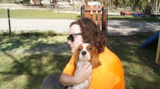 Demi-Cavalier-Banksia Park Puppies - 20 of 25