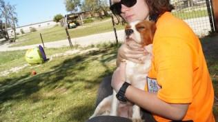 Demi-Cavalier-Banksia Park Puppies - 21 of 25