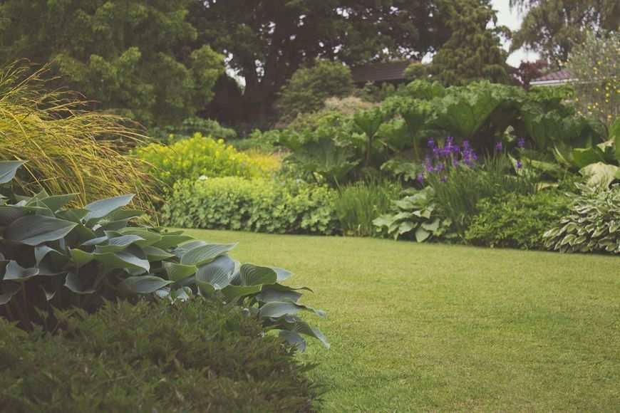 Jeśli chcesz posiadać wyjątkowy ogród