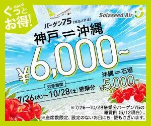 Solaseed Air_300×250のバナーデザイン