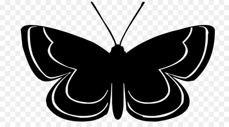 Butterfly Black And White png download 900*500 Free Transparent Butterfly png Download CleanPNG / KissPNG