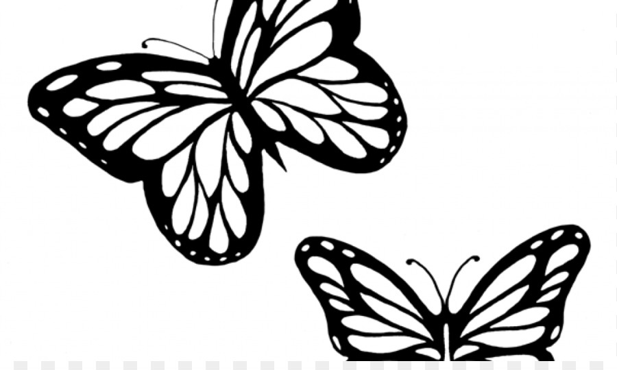 Butterfly Black And White Png Download 1024 600 Free Transparent Butterfly Png Download Cleanpng Kisspng