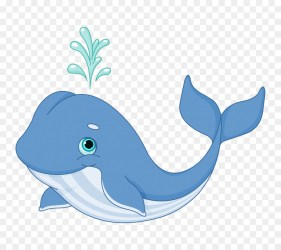 Whale Cartoon png download 800*800 Free Transparent Whale png Download CleanPNG / KissPNG