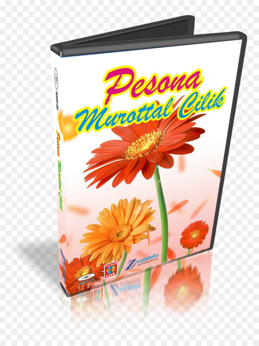 Pesona Indonesia Vector : pesona, indonesia, vector, Flowers, Clipart, Background, Download, 1211*1600, Transparent, Download., CleanPNG, KissPNG