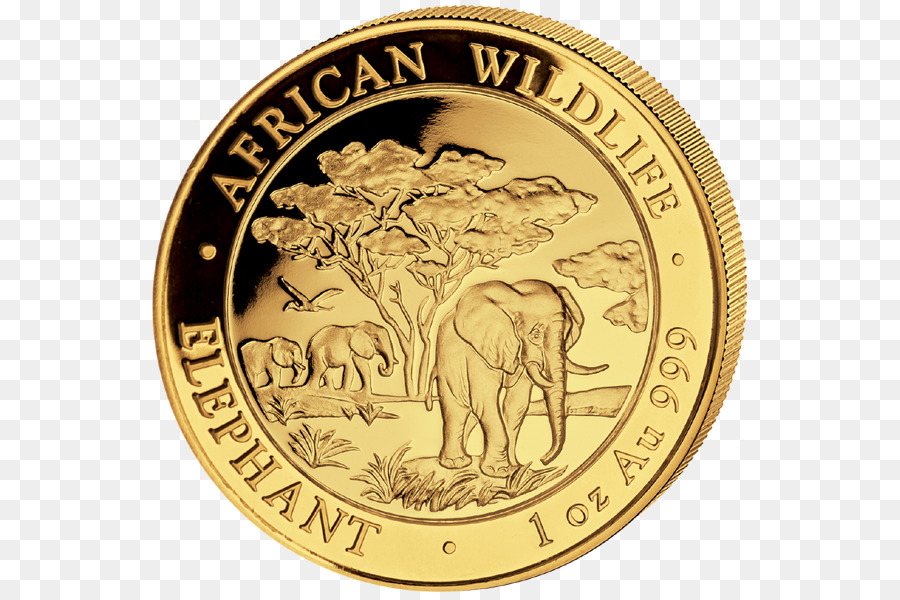 Easily change the design and change the coin color with any color you want. Elephant Cartoon Png Download 600 597 Free Transparent Coin Png Download Cleanpng Kisspng