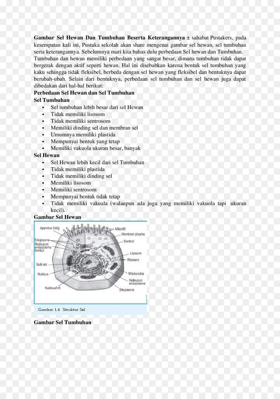 Gambar Membran Inti : gambar, membran, Paper, Background, Download, 1653*2339, Transparent, Document, Download., CleanPNG, KissPNG