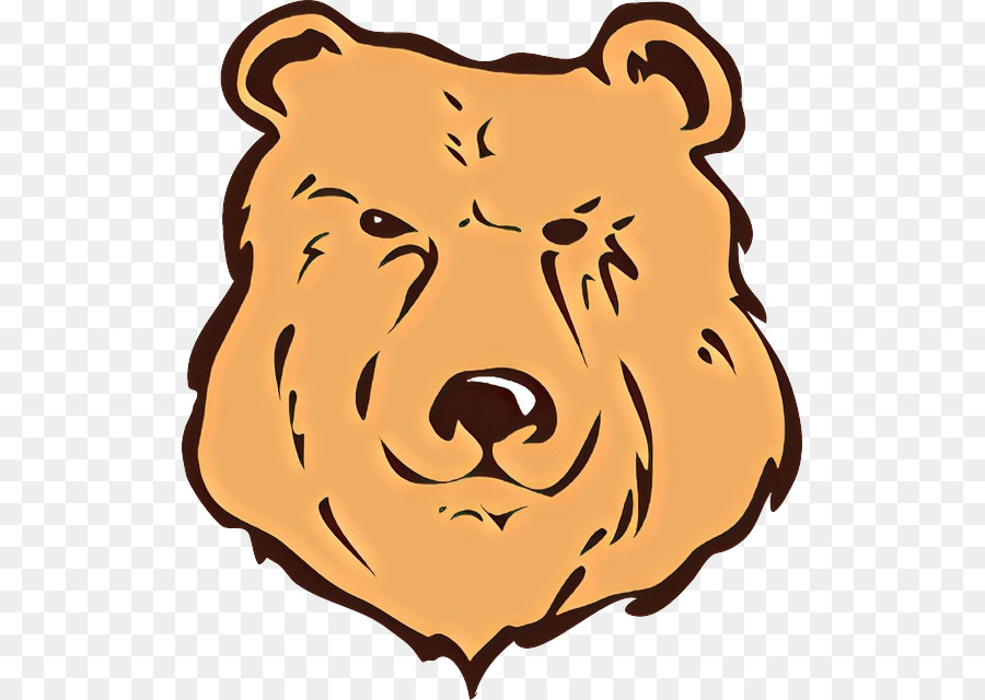 brown bear grizzly bear