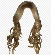 hairstyle clip art - hairstyles