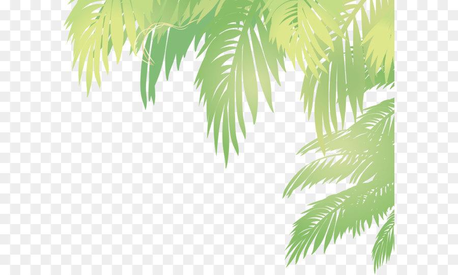 Fall Powerpoint Wallpaper Arecaceae Leaf Euclidean Vector Coconut Vector Palm