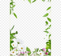 Picture frame Drawing Ceiling - Flower Border png download ...
