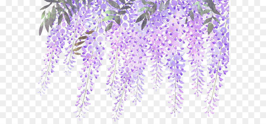 Pineapple Cute Wallpaper Lavender Flower Purple Wisteria Painted Lavender