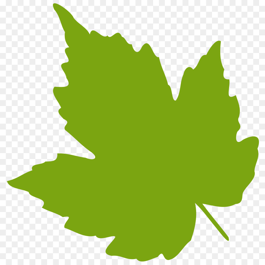 medium resolution of grape leaves grape grapevines plant leaf png