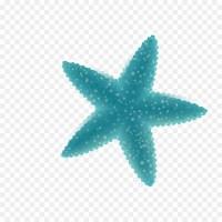Deep sea creature Cartoon Ocean - Vector blue starfish ...