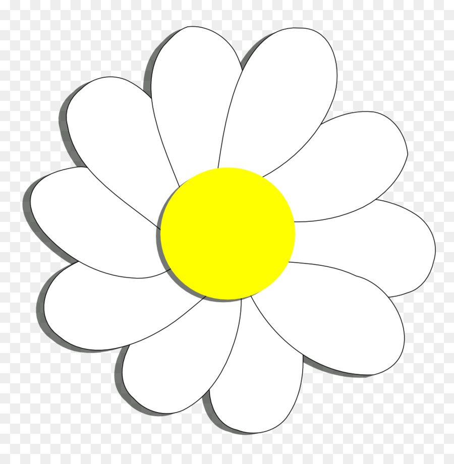 hight resolution of flower common daisy coloring book point png