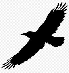 big bird bird flight eagle silhouette png [ 900 x 940 Pixel ]