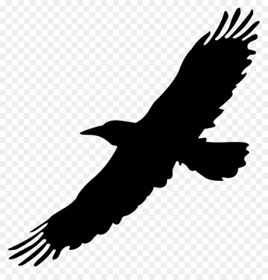 medium resolution of big bird bird flight eagle silhouette png