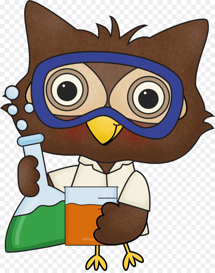 hight resolution of science free content scientist owl vertebrate png