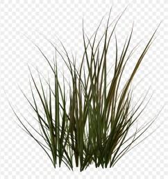 clipart gras [ 900 x 920 Pixel ]