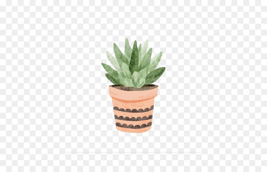 Aloe multivessel png download  455569  Free Transparent