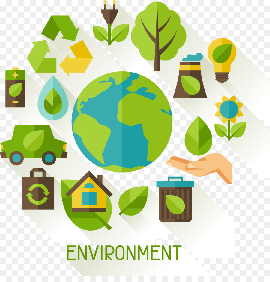 Graphic Tree Diagram Environment Pollution Ecology Illustration Calls For