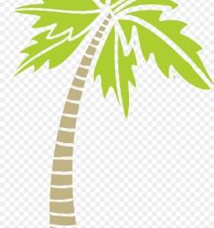 arecaceae areca palm tree plant flora png [ 900 x 1780 Pixel ]