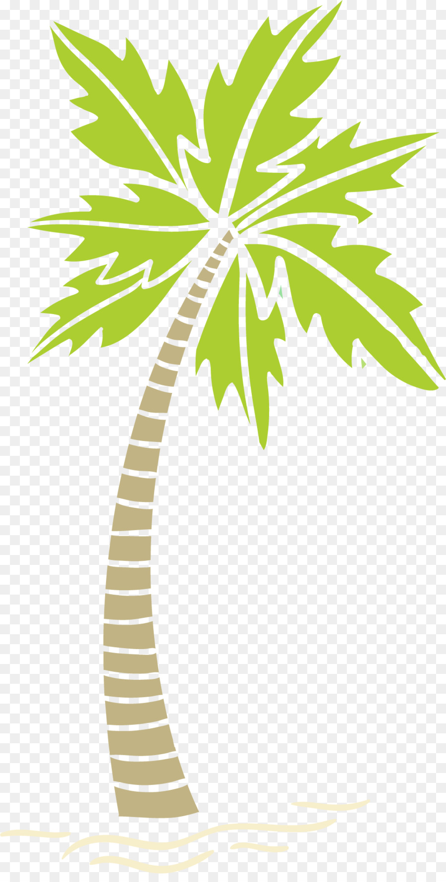 hight resolution of arecaceae areca palm tree plant flora png
