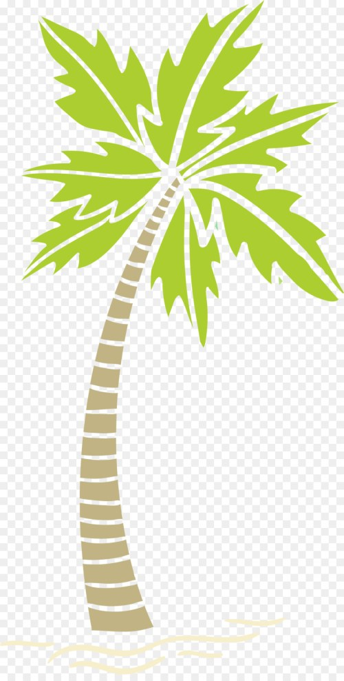 small resolution of arecaceae areca palm tree plant flora png