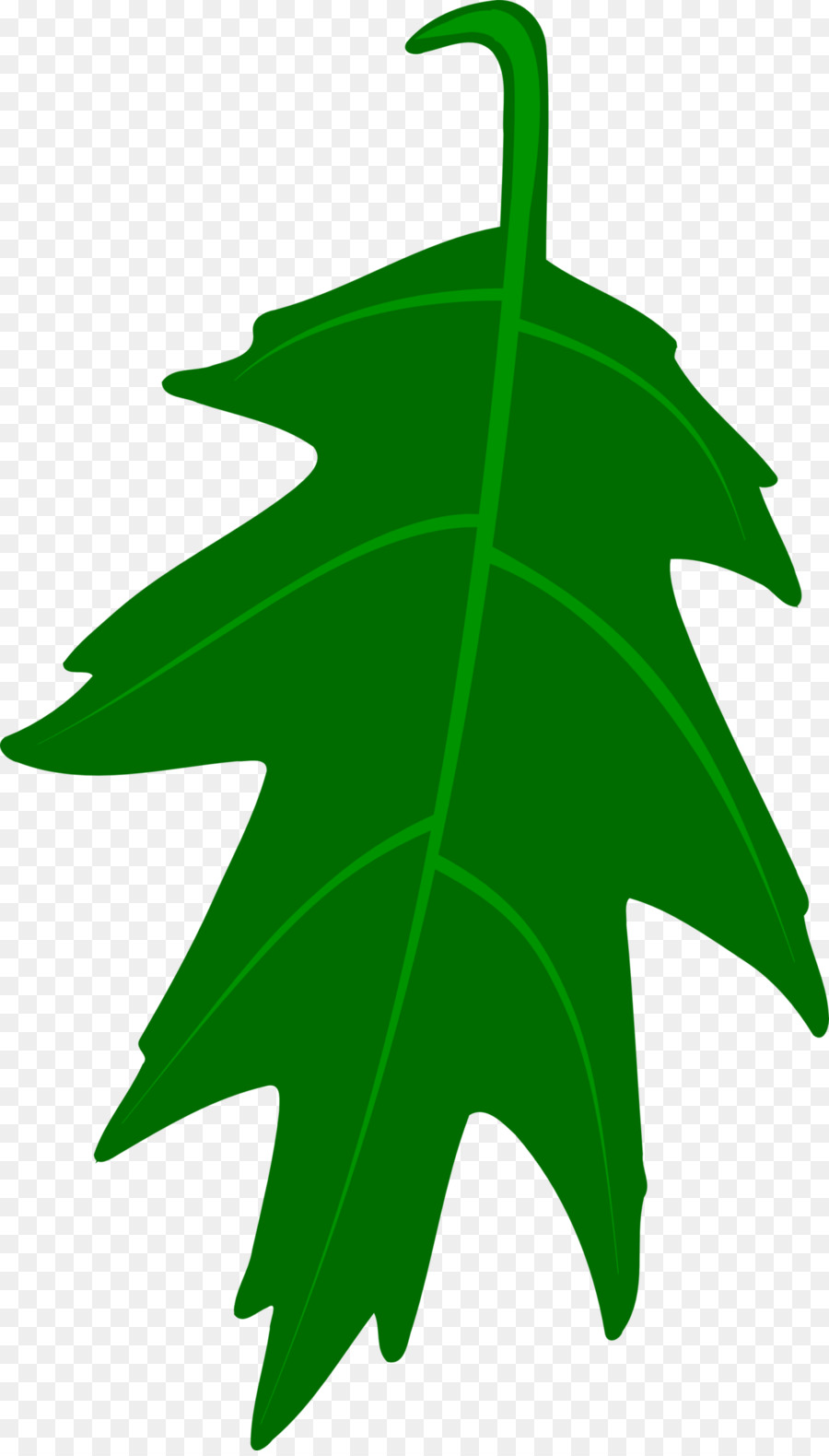 hight resolution of white oak english oak leaf plant png