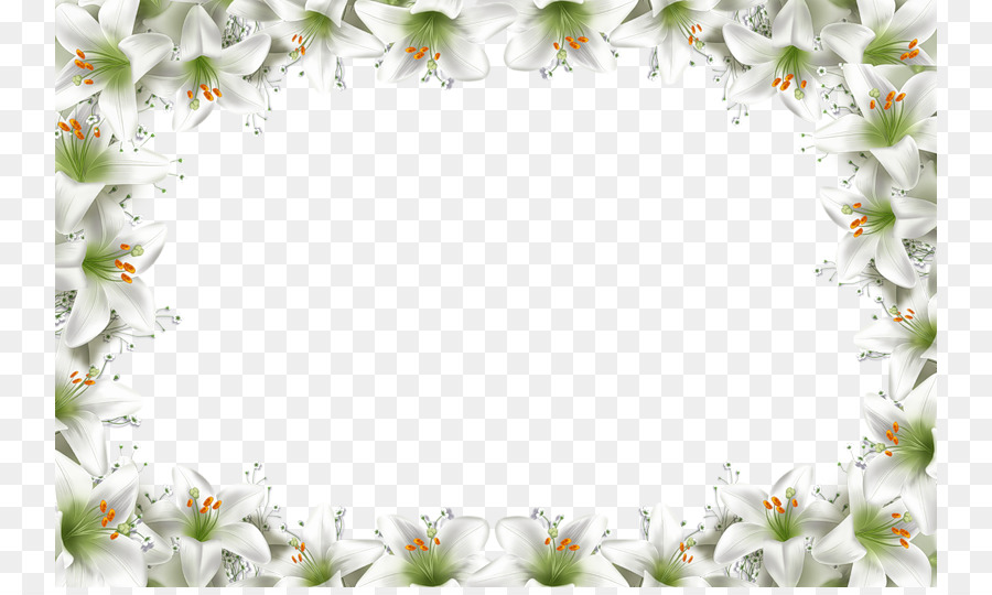 Picture frame Animation Collage Clip art  Floral