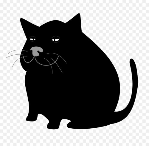 small resolution of cat kitten black cat domestic short haired cat snout png