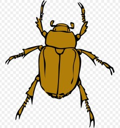 download scalable vector graphics clip art free bug clipart png download 768 900 free transparent download png download  [ 900 x 900 Pixel ]