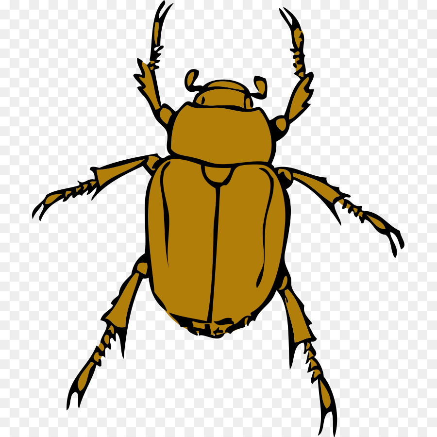 medium resolution of download scalable vector graphics clip art free bug clipart png download 768 900 free transparent download png download