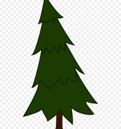 pine tree spruce fir pine family png [ 900 x 1040 Pixel ]