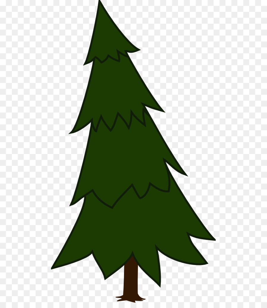hight resolution of pine tree spruce fir pine family png