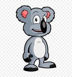 koala baby koala bear snout png [ 900 x 900 Pixel ]