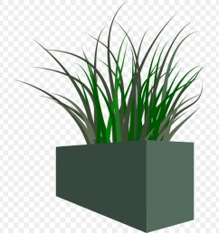 free grass clipart png download 750 900 free transparent planter png download  [ 900 x 900 Pixel ]