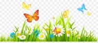 Flower Free content Spring Clip art - Flower Garden ...