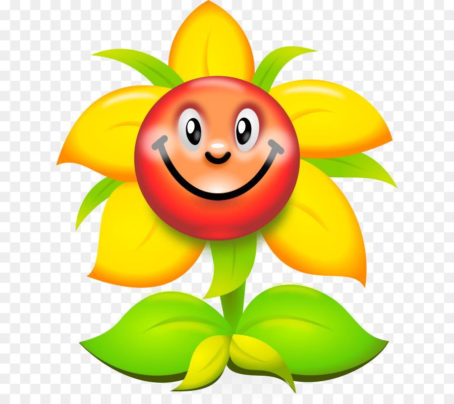 Blume Zeichnung Cartoon Clip art  Sonnenblume cartoon cliparts png herunterladen  800800