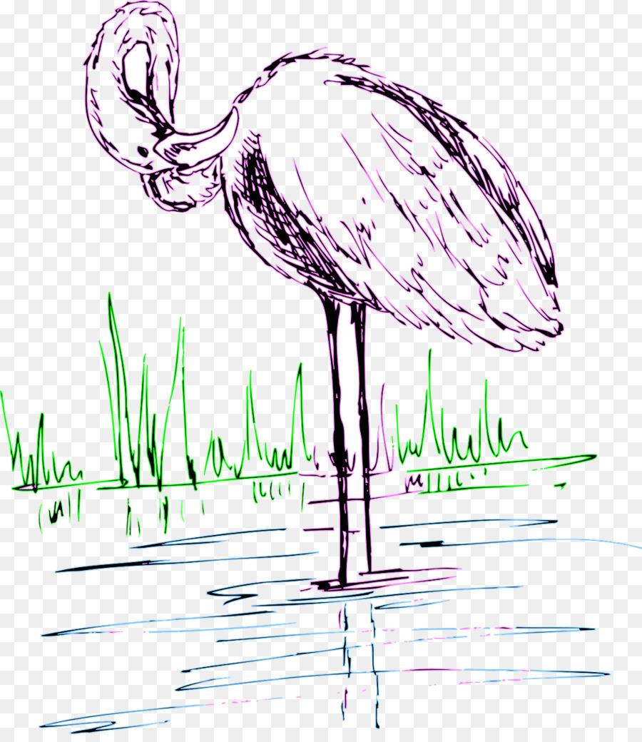 flamingo drawing png download