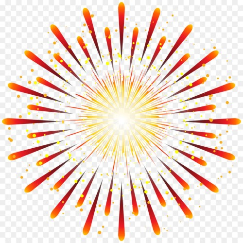 small resolution of fireworks photography animation flower symmetry png