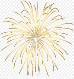 fireworks adobe fireworks animation plant flower png [ 900 x 960 Pixel ]