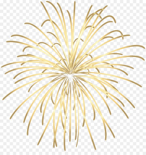 small resolution of fireworks adobe fireworks animation plant flower png