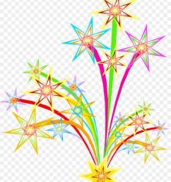 fireworks animation download plant flora png [ 900 x 1140 Pixel ]